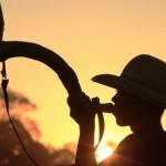 Confira as fazendas de destaque do dia 18 de setembro de 2017