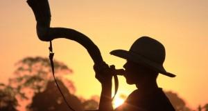 Confira as fazendas em destaque do dia 16 de Fevereiro