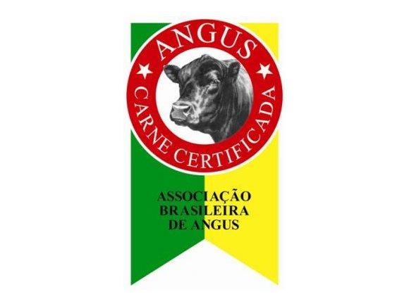 Quais as vantagens da raça Angus na produção de carne de qualidade?