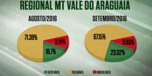 Farol verde cresce quase 5% na regional MT/Vale do Araguaia