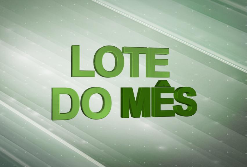 LogoLotesMes