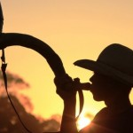 Confira as fazendas de destaque do dia 24 de maio