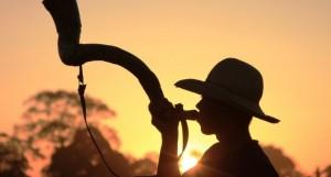 Confira as fazendas em destaque do dia 15 de fevereiro