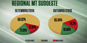 Confira a qualidade dos abates na regional MT/Sudoeste