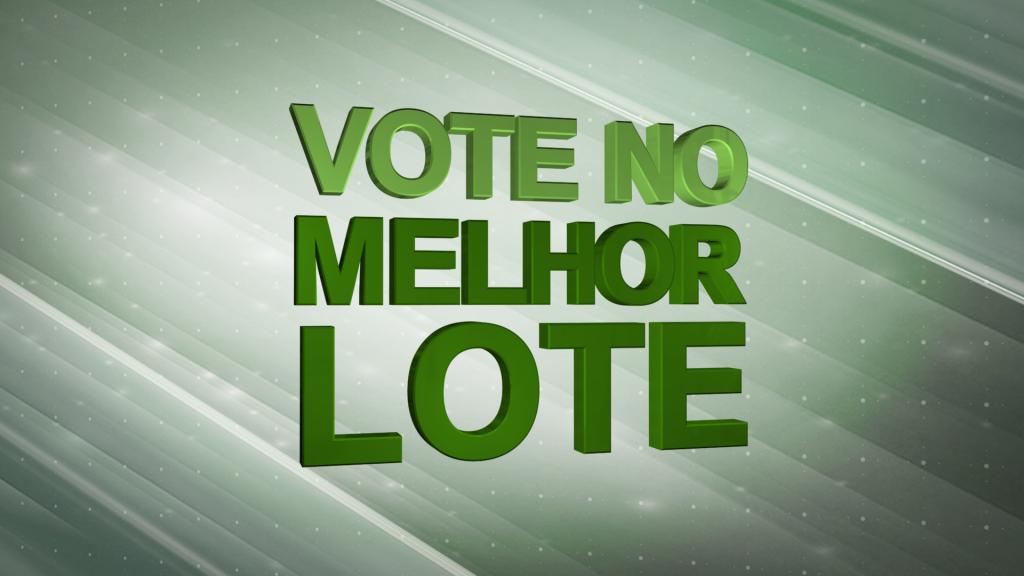 VoteNoMelhorLote
