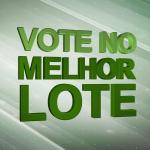 Vote no melhor lote da primeira quinzena de setembro