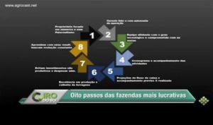 Conheça os 8 pontos em comum entre as fazendas mais lucrativas do Brasil