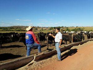 Gerenciar pessoas é tão importante quanto entender de boi e pastagem para ter uma fazenda de sucesso