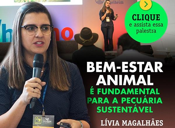 palestra-grupo-etco-bem-estar-animal-sustentabilidade-perspectivas-gado-de-corte-livia-magalhaes