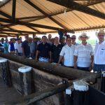 Treinamentos para combate a doenças que acometem o gado são realizados na região Norte