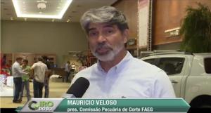 """Pecuária está """"muito aquém"""" de seu potencial, afirma Maurício Veloso"""