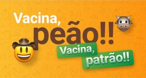 Febre aftosa: faça o download do PDF e treine sua equipe para a vacinação