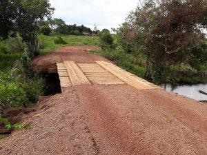 Pecuaristas reformam estradas e pontes no Pará para viabilizar embarque de boi gordo