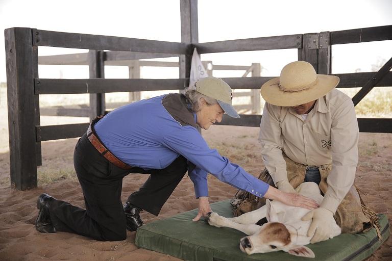temple-grandin-animal-welfare-first-step