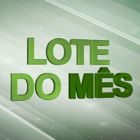 lote-do-mes