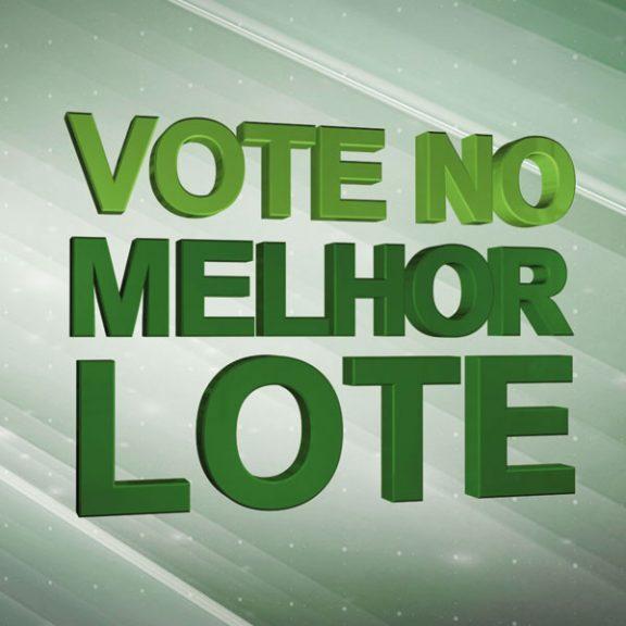 vote-no-melhor-lote