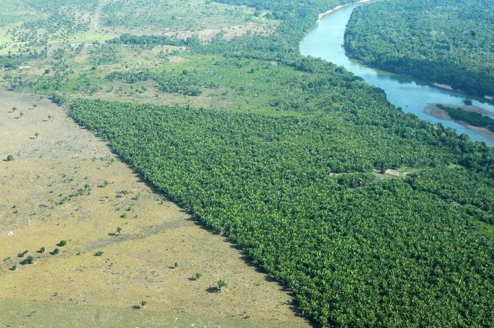 cadastro-ambiental-rural-perdeu-prazo-recomendacoes