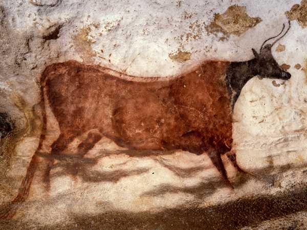 historia-da-carne-bovina-caverna-de-lascaux