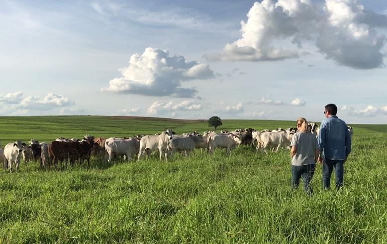 tocador-de-fazendas-ou-empresario-rural