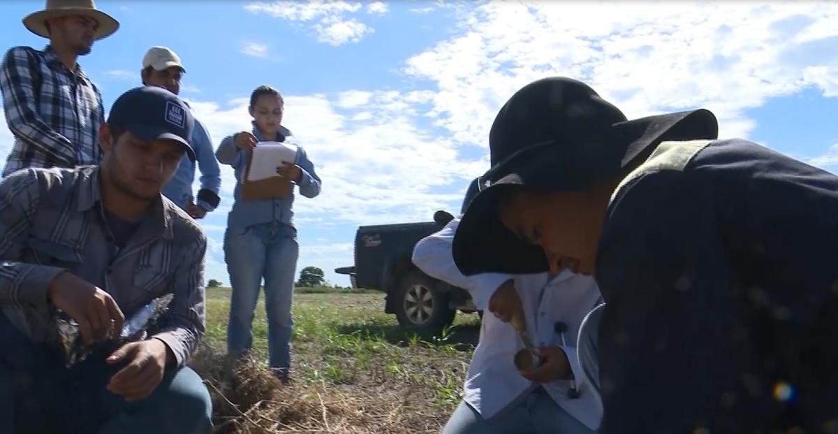 Avaliação de solo -  Fazenda Carpa Serrana
